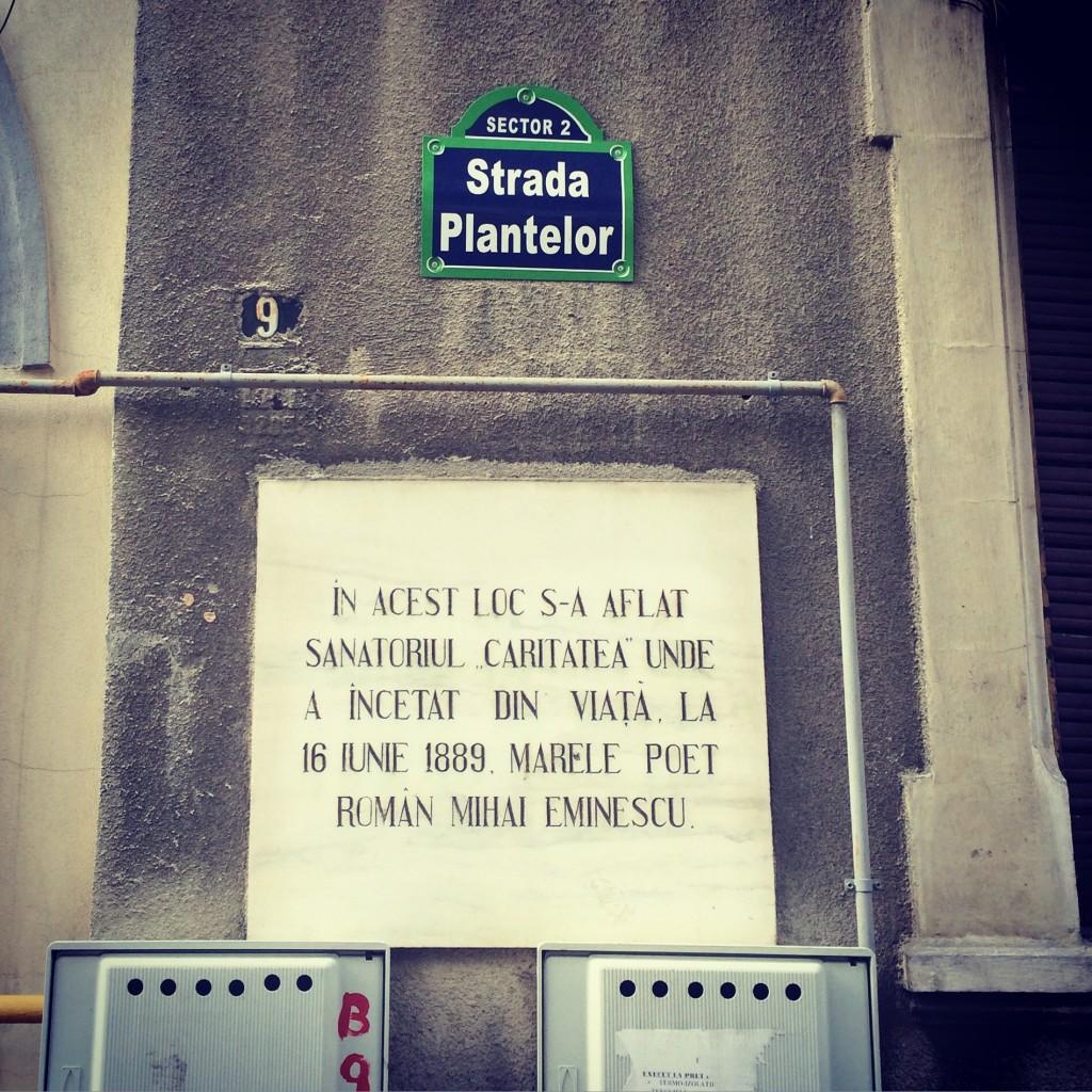 Eminescu strada Plantelor