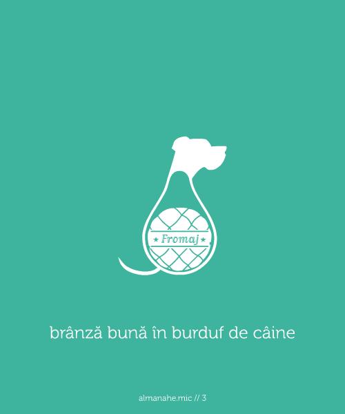 google.ro branza-buna-in-burduf-de-caine
