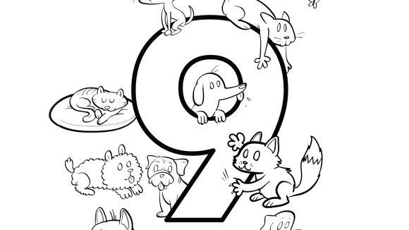 cifra 9